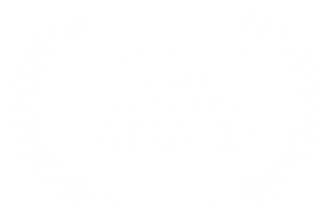 OFFICIAL SELECTION - Toronto Documentary Feature Short Film Festival - 2020 (1)